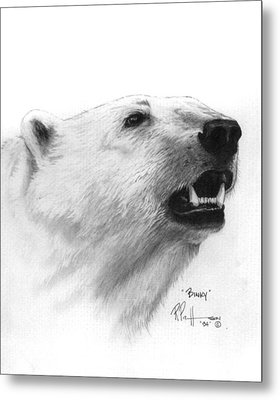 Scent In The Air Polar Bear Metal Print by Bob Patterson
