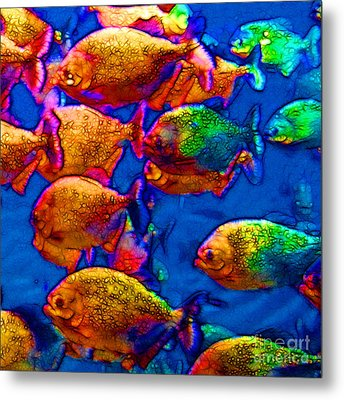 School Of Piranha V3 - Square Metal Print by Wingsdomain Art and Photography