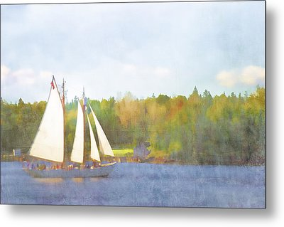 Schooner Castine Harbor Maine Metal Print by Carol Leigh