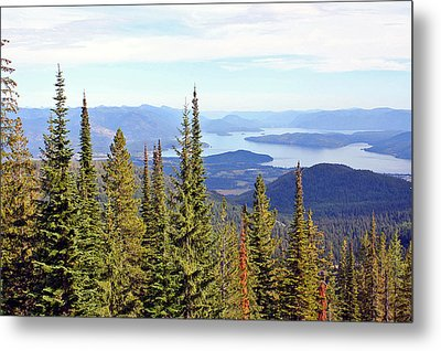 Schweitzer Mountain 7 Metal Print by Ellen Tully