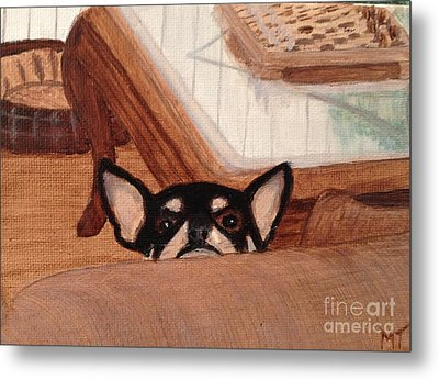 Scooter Peeking Over Couch Metal Print by Michelle Treanor