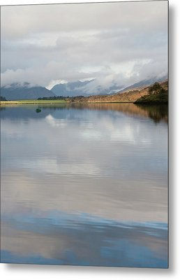 Scotch Mist Metal Print by Jacqi Elmslie