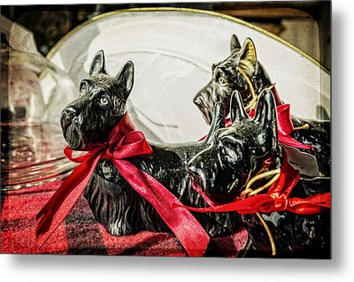 Scotties In The Window Metal Print by Caitlyn  Grasso
