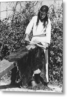 Scraping A Bear Hide Metal Print by Underwood Archives Onia
