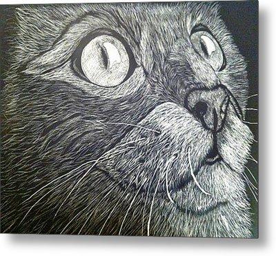 Scratch Art Kitty Cat Metal Print