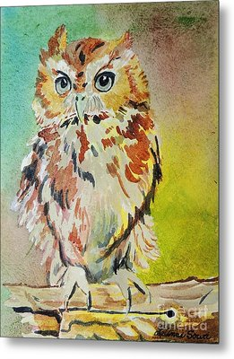 Screech Owl Metal Print by LeAnne Sowa
