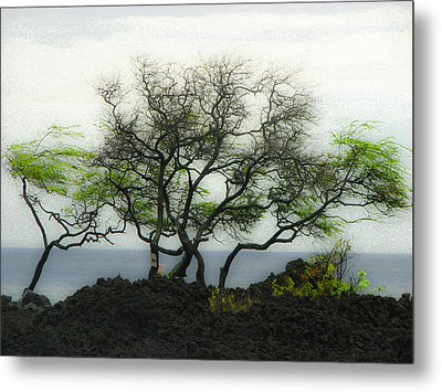 Metal Print featuring the photograph Sea Breeze 2 by Jim Snyder
