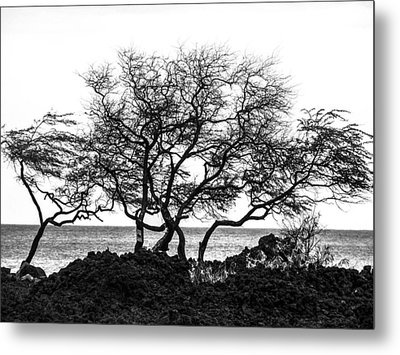 Metal Print featuring the photograph Sea Breeze 3 by Jim Snyder
