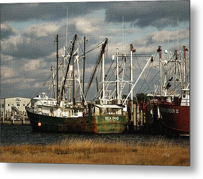 Sea Dog Metal Print by Gordon Beck