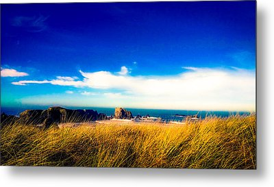 Sea Grass At Elephant Rock Metal Print