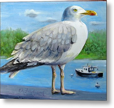 Sea Gull On Alert Metal Print