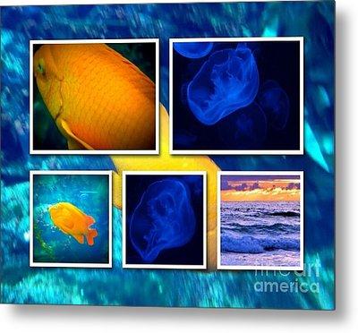 Sea Jelly Fish Metal Print by Susan Garren