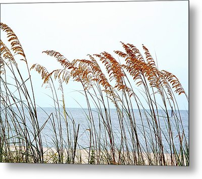 Sea Oats And Serenity Metal Print