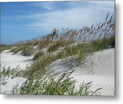 Metal Print featuring the photograph Sea Oats by Ellen Tully