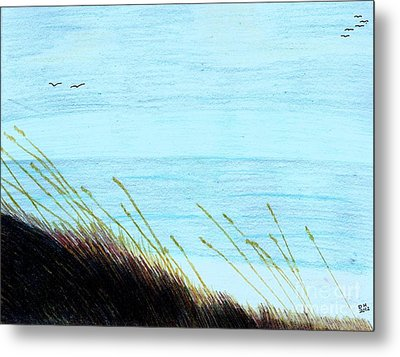 Metal Print featuring the drawing Sea Oats In The Wind Drawing by D Hackett