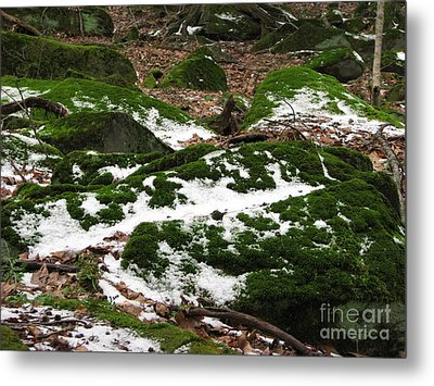 Sea Of Green Metal Print