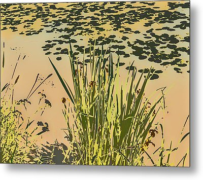 Metal Print featuring the photograph Sea Plants Abstract by Leif Sohlman