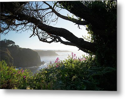 Sea Rock Inn View Metal Print by Colleen Renshaw