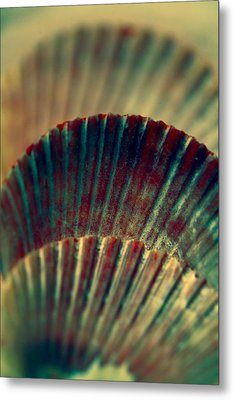 Sea Shell Art 2 Metal Print