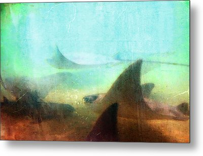 Sea Spirits - Manta Ray Art By Sharon Cummings Metal Print by Sharon Cummings