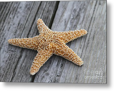 Sea Star On Deck Metal Print