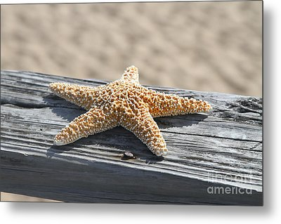 Sea Star On Railing Metal Print