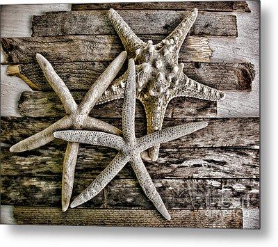 Sea Stars Metal Print by Colleen Kammerer