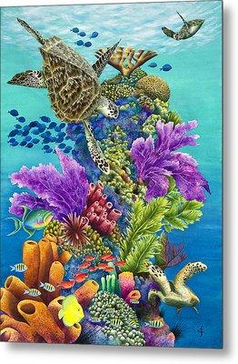 Sea Summit Metal Print by Carolyn Steele