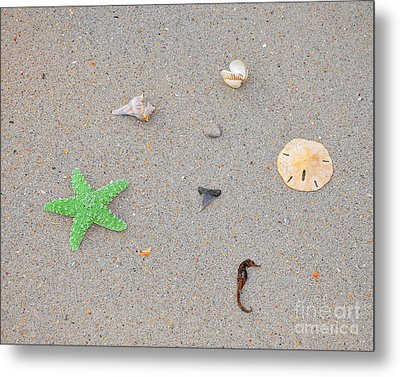 Sea Swag - Green Metal Print by Al Powell Photography USA