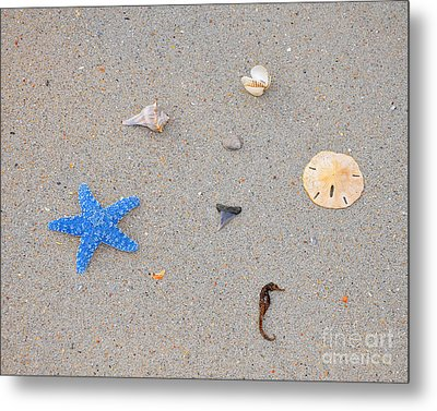 Sea Swag - Light Blue Metal Print by Al Powell Photography USA