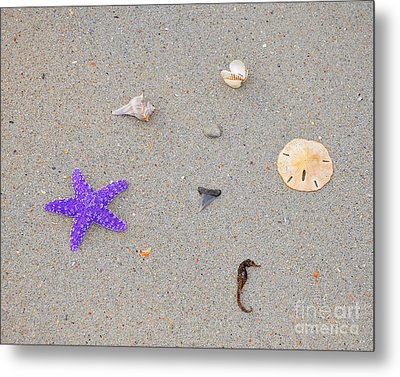 Sea Swag - Purple Metal Print by Al Powell Photography USA