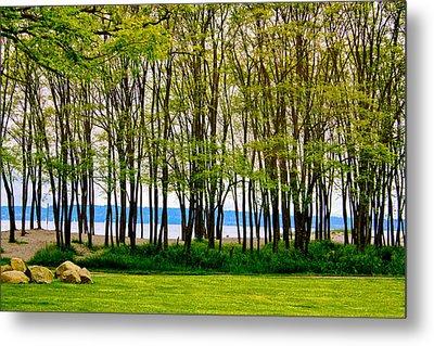 Sea Through The Trees Metal Print