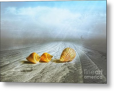 Sea Treasures Metal Print