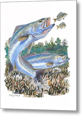 Sea Trout Metal Print by Carey Chen