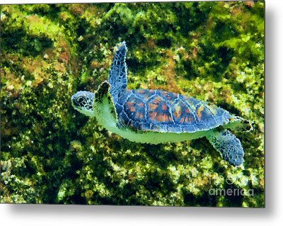 Sea Turtle Swimming In Water Metal Print by Dan Friend