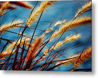 Metal Print featuring the photograph Seagrass In The Breeze by Pamela Blizzard