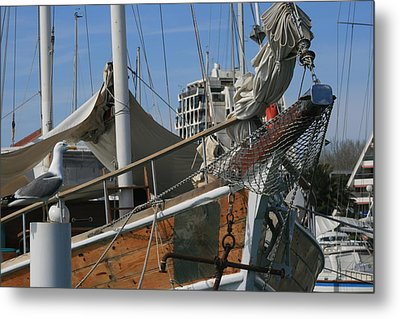 Seagull And Boat Metal Print