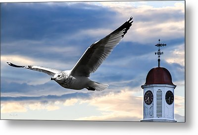 Seagull And Clock Tower Metal Print by Bob Orsillo