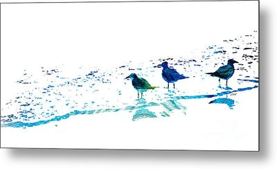 Seagull Art - On The Shore - By Sharon Cummings Metal Print by Sharon Cummings