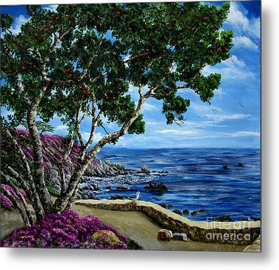 Seagull At Pacific Grove Overlook Metal Print by Laura Iverson