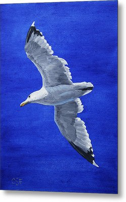 Seagull In Flight Metal Print by Crista Forest