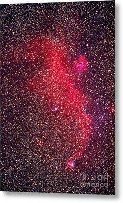 Seagull Nebula Metal Print