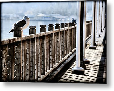 Seagull On The Boardwalk Metal Print by Sally Bauer