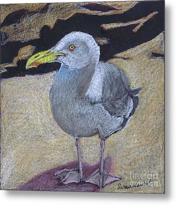 Metal Print featuring the painting Seagull On The Rocks by Susan Herbst