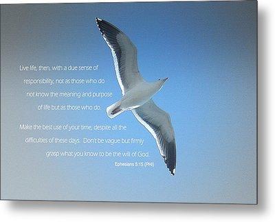 Seagull Soaring W/ Scripture Metal Print