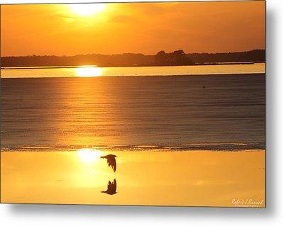 Seagull Through Sunset Metal Print