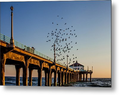 Seagulls At The Pier Metal Print