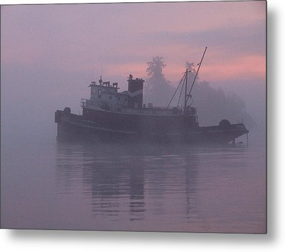 Seahorse On A Misty Morning Metal Print
