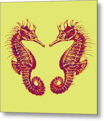 Seahorses In Love Metal Print by Jane Schnetlage
