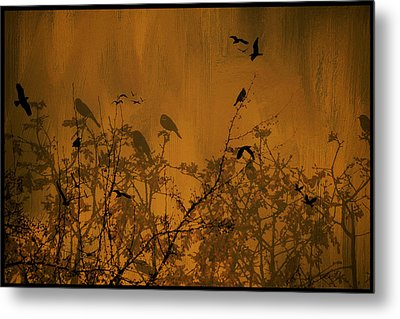 Searching For Spring Metal Print by Diane Schuster